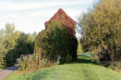 Pumpenhaus am Spreedeich in Lübbenau - das Gebäude ist mit Efeu und wildem Wein bewachsen.