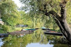 Bootshafen im Spreewald bei Lübbenau - Kähne mit Bänken / Sitzgelegenheiten für Touristen sind am Ufer festgemacht.