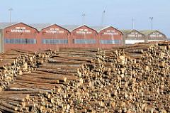 Holzlager, gestapelte Baumstämme im Lübecker Hafen - im Hintergrund Dächer von Lagerhäusern mit Holzfassaden an der Trave.