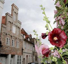 Historisches Gebäude mit Treppengiebel - blühende Stockrosen an der Strasse - Bilder aus der Hansestadt Lübeck.