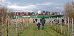 Junge Obstbäume am Elbufer im Alten Land bei Grünendeich - auf der Elbe der havarierte, festgefahrene Frachter CSCL Indian Ocean; Schaulustige stehen am Elbufer.