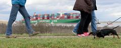 Spaziergänger mit Hund auf dem Elbdeich in Grünendeich - auf der Elbe der havarierte Containerfrachter CSCL Indian Ocean.