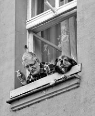Hund mit Herrchen blicken aus einem Fenster in der Altstadt von Kłodzko / Glatz.