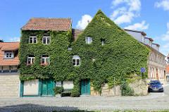 Hausfassaden mit grünen Kletterpflanzen bewachsen; Grauer Hof / Bakenstrasse, Halberstadt.