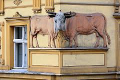 Historisches Gebäude - Apotheke / Apteka unter den Bullen /  Kamienica Pod Bykami in Świdnica, Schweidnitz.