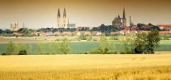 Sommerliches Panorama von Halberstadt - in der Bildmitte der Dom zu Halberstadt, St. Stepanus und St. Sixtus - re. die St. Martinkirche und lks. die Liebfrauenkirche; im Vordergrund Kornfeld und Wiesen.