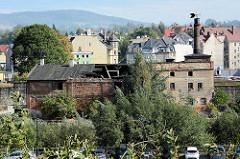 Industrieruine - historische Industriearchtektur, Ziegelgebäude mit eingefallenem Dach, Schornstein - Bilder aus  Kłodzko (Glatz).