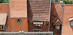 Dächer der Stadt Quedlinburg - Dachfenster unterschiedlicher Größe; rote Geranien.