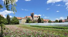 Blick über Blumenfelder / Blumenzucht zum Quedlinburger Schlossberg - romanische Stiftskirche St. Servatius, geweiht 1129; Renaissanceschloss aus dem 16./17. Jahrhundert jetzt Sitz vom  Städtischen Museum.