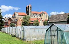 Treibhäuser mit Blumenzucht - Quedlinburger Schlossberg - romanische Stiftskirche St. Servatius, geweiht 1129; Renaissanceschloss aus dem 16./17. Jahrhundert jetzt Sitz vom  Städtischen Museum.
