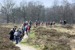 Wandergruppe zwischen Heidekraut auf einem der Wanderwege im Naturschutzgebiet Wittmoor in Hamburg Duvenstedt.