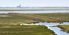 Blick über die Insel Kirr  im Barther Bodden bei Zingst - Priele durchziehen das flache Land, im Hintergrund die Kirche von Barth. Die Vogelschutzinsel Kirr ist eine Salzgrasinsel mit einer Länge von ca. 3,5 km und einer maximalen Breite von 1,5 k