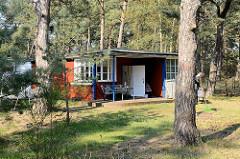Ferienhaus - Wochenendhaus im Ostseebad Prerow - gepflegter Rasen am Rand eines Kiefernwaldes.