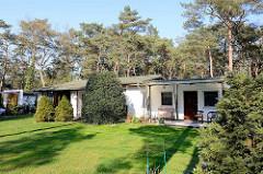 Ferienhaus - Wochenendhaus im Ostseebad Prerow - gepflegter Rasen am Rand eines Kiefernwaldes