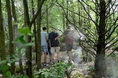 Garten Dunst & Nebel im Inselpark von Hamburg Wilhelmsburg; Atmosphäre wie im Regenwald mit Sumpfzypressen und Erlen, Japananemonen, Fingerhut und Farnen