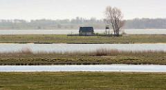 Blick von der Vogelschutzinsel Kirr zur unbewohnten Insel Barther Oie, Gemeinde Zingst im Bundesland Mecklenburg-Vorpommern. Die Insel ist Teil des Naturschutzgebiets im Nationalpark Vorpommersche Boddenlandschaft.
