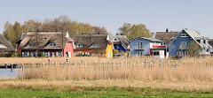 Reetdachhäuser, farbige Fassade - Ferienhäuser am Prerower Strom im Ostseebad Prerow.
