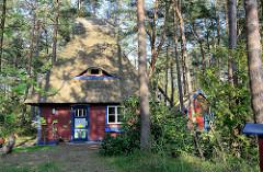 Ferienhaus mit Reetdach zwischen Kiefern - Dachfenster / Ochsenauge; bunte Dekor-Eingangstür / Bilder aus dem Ostseebad Prerow.