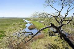 Blick über die Insel Kirr  im Barther Bodden bei Zingst - Priele durchziehen das flache Land. Die Vogelschutzinsel Kirr ist eine Salzgrasinsel mit einer Länge von ca. 3,5 km und einer maximalen Breite von 1,5 km mit weitverzweigten Prielen. Durch