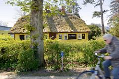 Ferienhaus mit Reet gedeckt - gelbe Holzfassade; Ostseebad Zingst, Mecklenburg-Vorpommern.