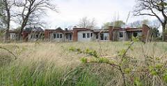 Verlassene Ferienhaussiedlung, leere verfallene Ferienhäuser - Reihenhaus; hohes Gras, Brombeergestrüpp - Zingst, Mecklenburg-Vorpommern.