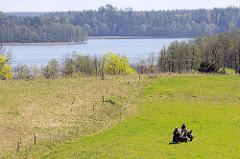 Romantische Seenlandschaft in Masuren / Polen - Pferdefuhrwerk auf der Weide.