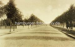 Altes Bild von der Bebelallee in Hamburg Winterhude - Straße mit Kopfsteinpflaster, Reitweg mit Pferden / Reitern.