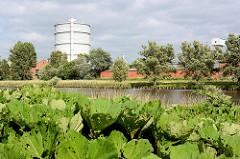 Bewachsenes Kanalufer von der Kanaltrave in Lübeck - am anderen Ufer der 1954 gebaute 70 m hohe Gasometer / Scheibengasbehälter.
