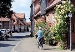Blühende Rosen an der Fassade eines Fachwerkhauses in Bleckede - Fahrradfahrer.