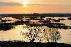 Masuren / Polen - Seenlandschaft im Sonnenaufgang.