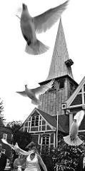 Um dem Hochzeitspaar vor der Bergedorfer Kirche Glück für ihre Ehe zu wünschen werden weisse Tauben in die Freiheit gelassen. Sie fliegen vor der Fachwerkkirche aus ihrem Käfig in die Luft.