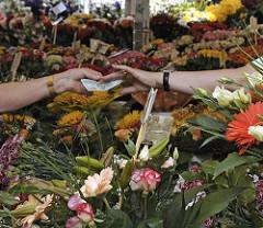 Blumenstand mit farbenprächtigen Schnittblumen auf dem Bergedorfer Wochenmarkt. Eine Kundin reicht gerade der Blumenverkäuferin einen Geldschein.