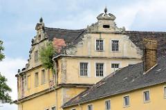 Giebel mit jungen Bäumen in der Dachrinne vom Coswiger Schloss.  Coswig war von 1603 bis 1793 Teil des Fürstentums Anhalt-Zerbst. Das in der Stadt befindliche Schloss wurde 1667–1677 erbaut und diente bis ins 19. Jahrhundert als Witwensitz. Während i