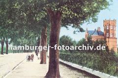 alte Bergedorfer Ansicht von der Wentorfer Strasse ca. 1905; auf dem historischen Foto ist der Bürgersteig dicht mit Strassenbäumen bepflanzt - Kinder stehen an der Allee unter einer gebogenen Strassenlaterne. Hinter einem Eisenzaun steht eine St