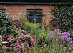 Historisches Handwerksgebäude einer alten Bergedorfer Schmiede, das um 1700 errichtet wurde; im Vordergrund ein prächtiger Blumengarten mit Hortensien und Phlox. Die Backsteinfassade der Werkstatt ist mit Efeu bewachsen - an der Mauer hängen zwei