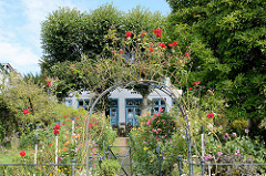 Doppelhaus am Strandweg in Hamburg Blankenese - Vorgarten mit blühenden Rosen am Ufer der Elbe.
