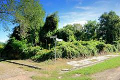 Überwucherte Ruinen in der Festung Küstrin / Kostrzyn - Polen; Strassenschilder für die Predigergasse und Berliner Strasse