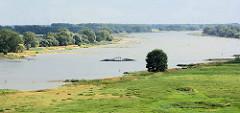 Blick über die Elbe bei Arneburg - die Gierseilfähre überquert den Fluss.