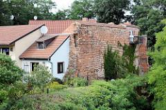 Alte Burgmauer mit angebauten Wohnhäusern in Arneburg.