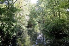 Lauf der Wandse in Hamburg Tonndorf -  Bäume am Flussufer.