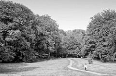 Wiese im Niendorfer Gehege - Parkanlage in Hamburg Niendorf; hohe Bäume - einsame Spaziergängerin.