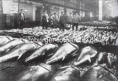 Historische Ansicht der Altonaer Fischauktionshalle - Fische sind zur Versteigerung / Verkauf vorbereitet.