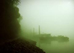 Nebel am Morgen - Ufer der Norderelbe bei Hamburg Entenwerder in dichtem Nebel gehüllt; Schemen von Dalben und Arbeitsschiffen.