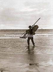 Historische Aufnahme von einem Krabbenfischer im Watt bei Cuxhaven.