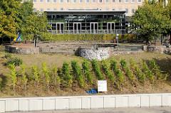 Hamburger Jugendherberge auf dem Stintfang in der Hamburger Neustadt; auf dem Hang befindet sich seit 1995 ein kleiner Weinberg.