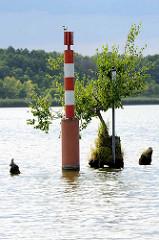 Fahrrinnenbegrenzung / Kennzeichen des Fahrwassers in Seegewässern - rechte Seite der Fahrrinne; Kremmer See - Kremmer Rhin.