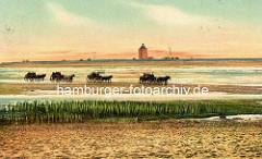 Historische Ansicht von der Insel Neuwerk - eine Karawane von  Wattwagen fährt durch das Nordseewatt.