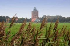 Weide mit Gräsern - Herde Kühe, Leuchtturm von Neuwerk, Wohnhäuser.