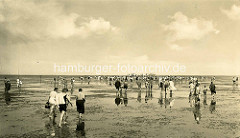Altes Bild von der Wattwanderung bei Ebbe an der Elbe / Nordsee in Cuxhaven.