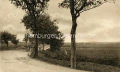 Altes Bild - Landstraße und Felder bei Cuxhaven.